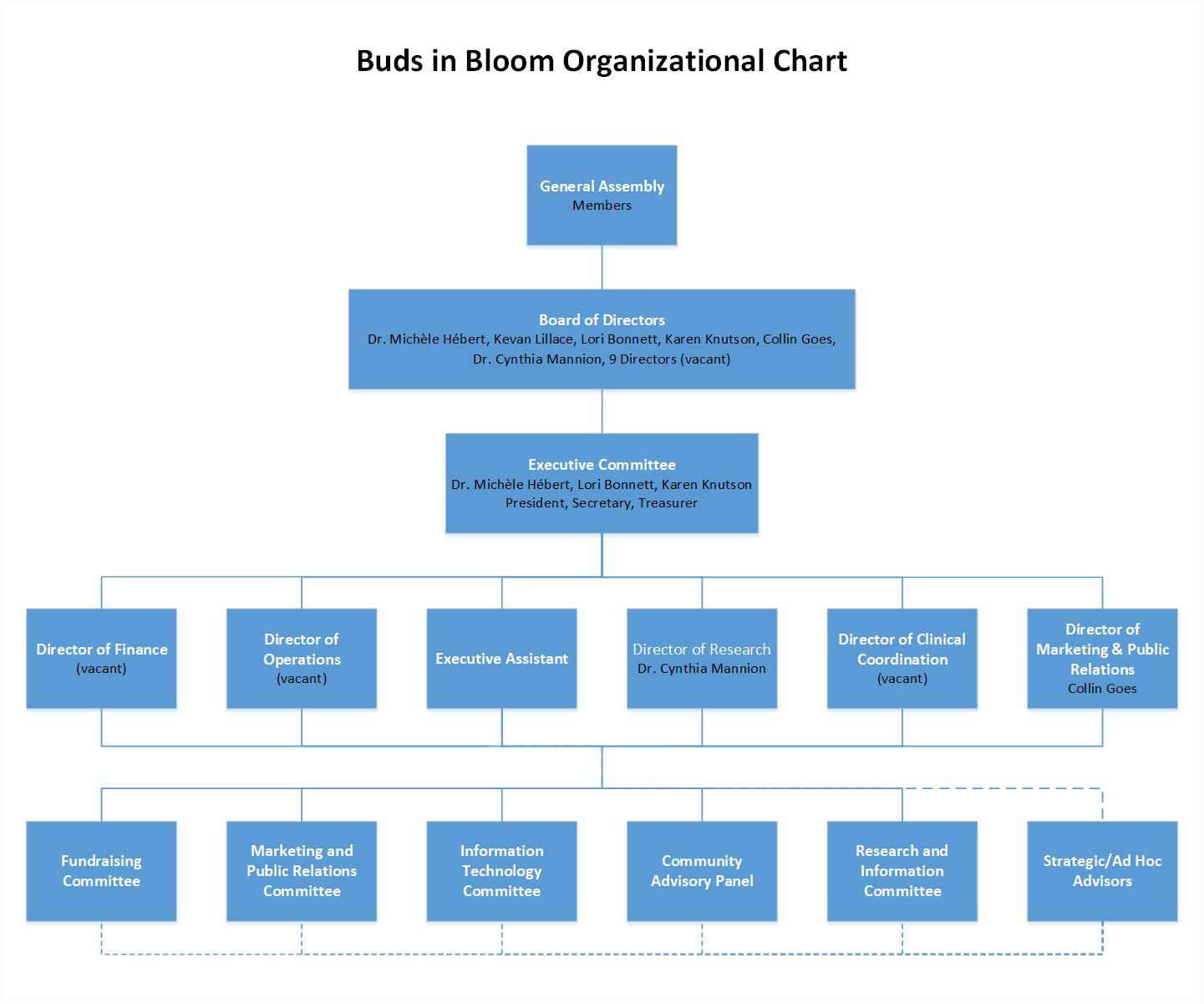 Organizational-Chart-EN-V9